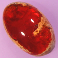 Common Fire Opal